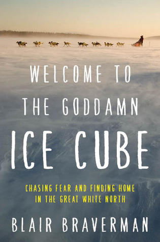 book cover of welcome to the goddamn ice cube